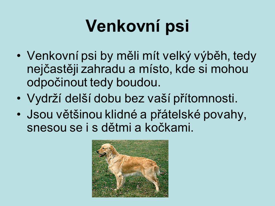 Venkovní psi Venkovní psi by měli mít velký výběh, tedy nejčastěji zahradu a místo, kde si mohou odpočinout tedy boudou.
