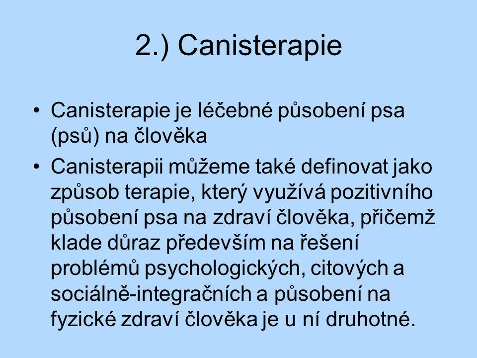 2.) Canisterapie Canisterapie je léčebné působení psa (psů) na člověka