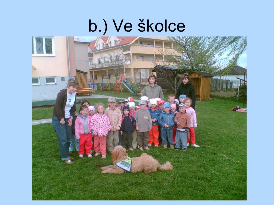 b.) Ve školce