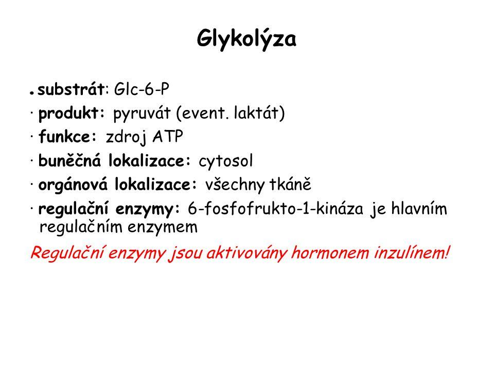 Glykolýza · produkt: pyruvát (event. laktát) · funkce: zdroj ATP