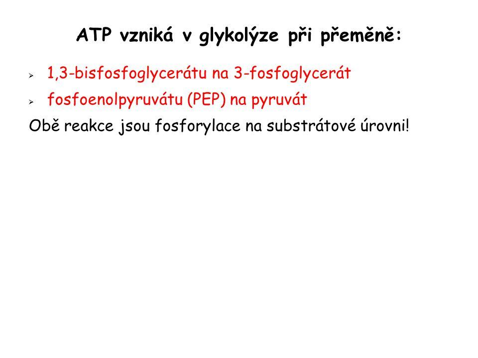 ATP vzniká v glykolýze při přeměně: