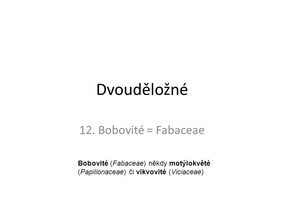 Dvouděložné 12. Bobovité = Fabaceae