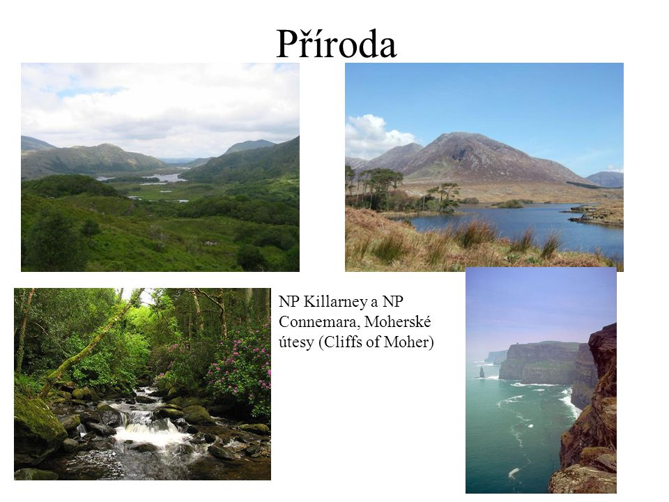 Příroda NP Killarney a NP Connemara, Moherské útesy (Cliffs of Moher)