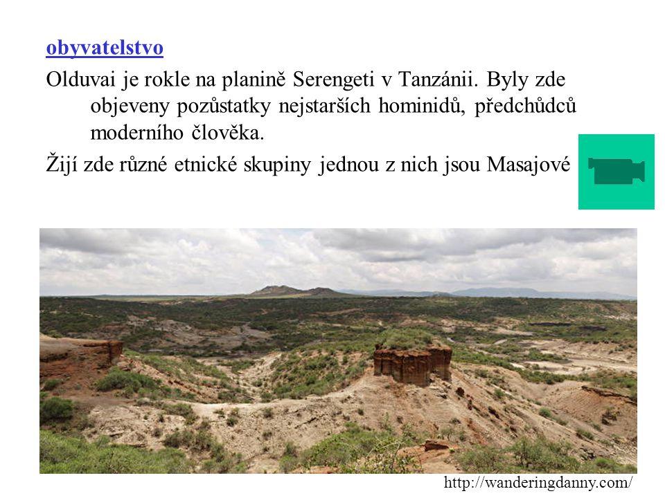 obyvatelstvo Olduvai je rokle na planině Serengeti v Tanzánii