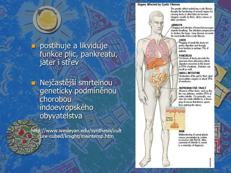 postihuje a likviduje funkce plic, pankreatu, jater i střev