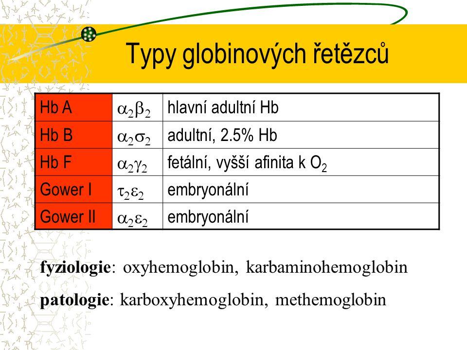Typy globinových řetězců