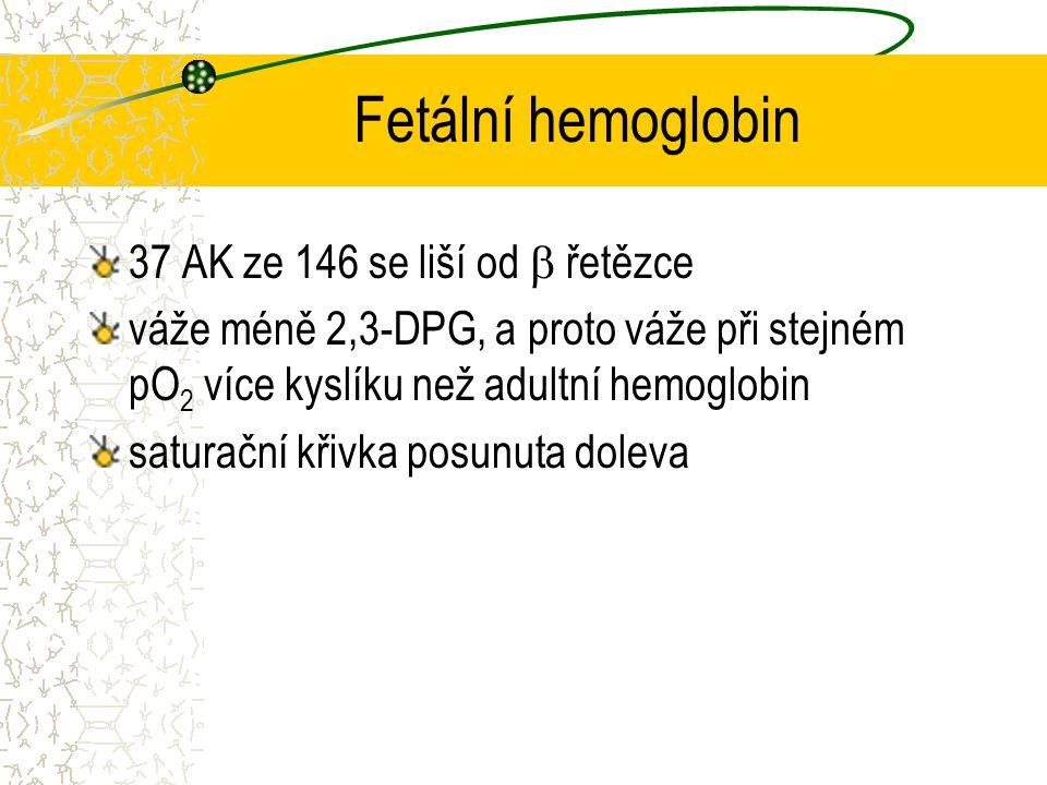 Fetální hemoglobin 37 AK ze 146 se liší od  řetězce