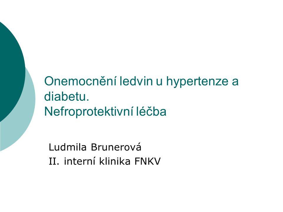 Onemocnění ledvin u hypertenze a diabetu. Nefroprotektivní léčba