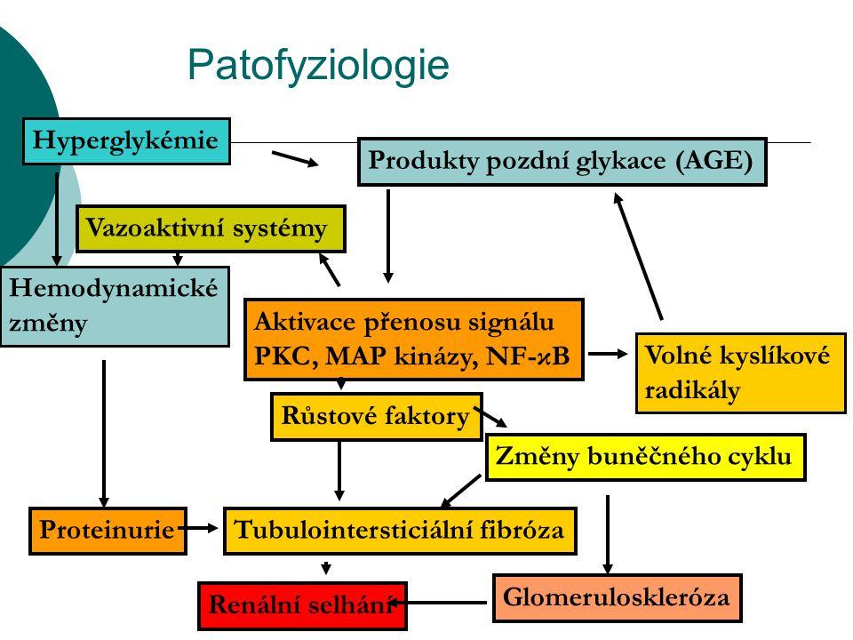 Patofyziologie Hyperglykémie Produkty pozdní glykace (AGE)