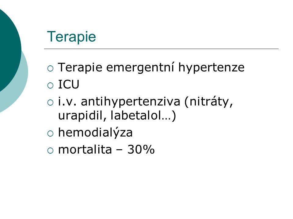 Terapie Terapie emergentní hypertenze ICU