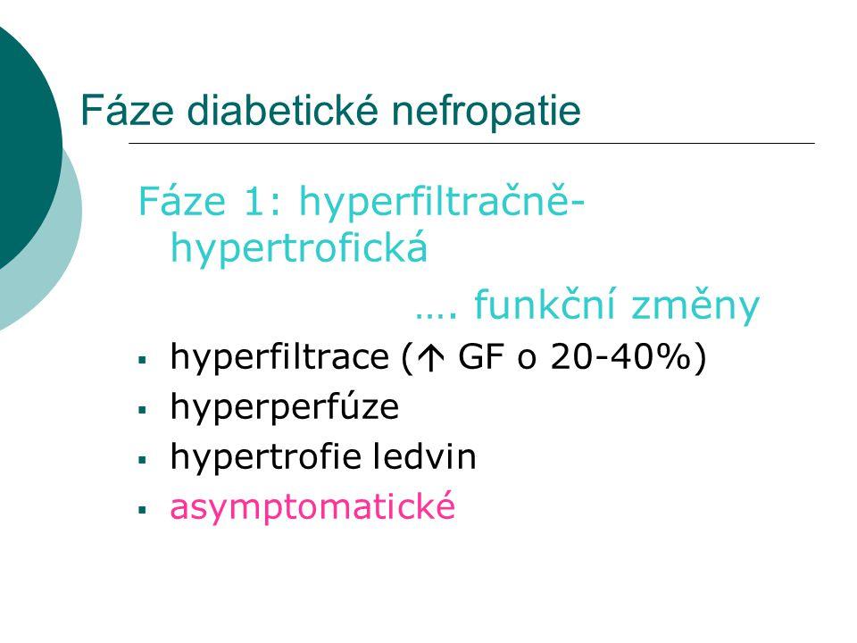 Fáze diabetické nefropatie