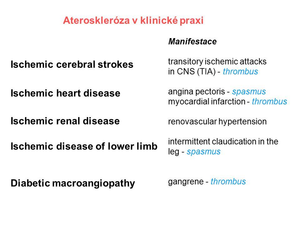 Ateroskleróza v klinické praxi