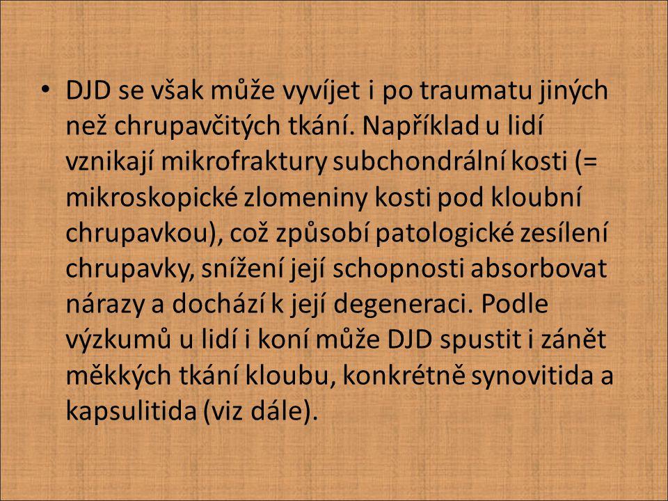 DJD se však může vyvíjet i po traumatu jiných než chrupavčitých tkání