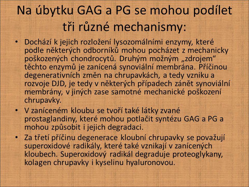 Na úbytku GAG a PG se mohou podílet tři různé mechanismy: