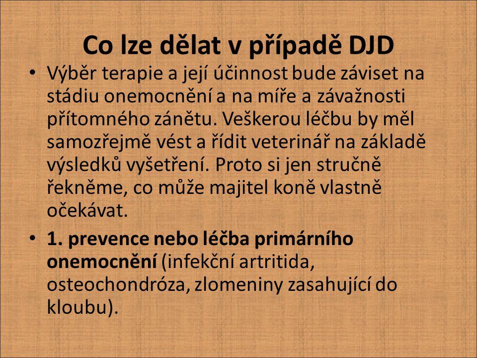 Co lze dělat v případě DJD