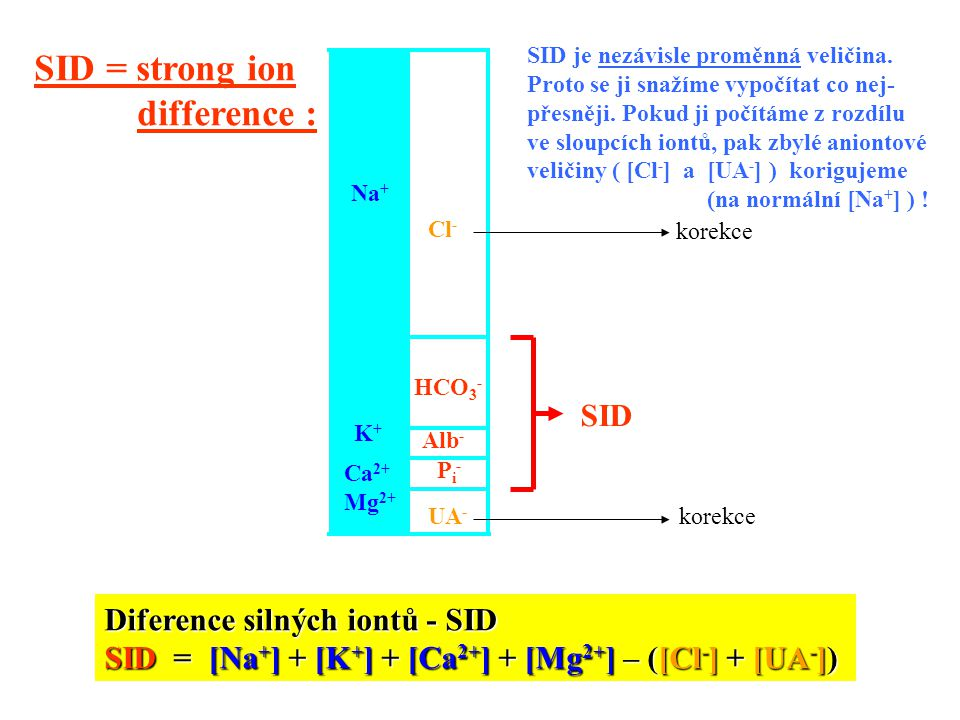 SID = strong ion difference : SID Diference silných iontů - SID