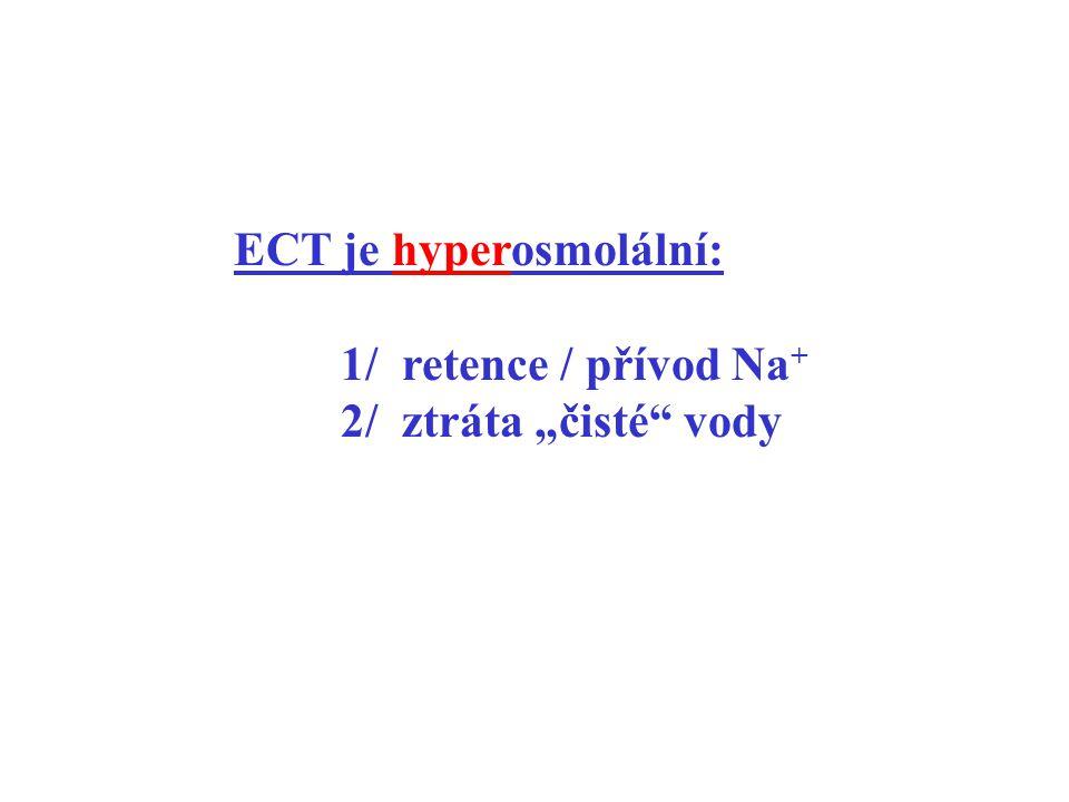 ECT je hyperosmolální: