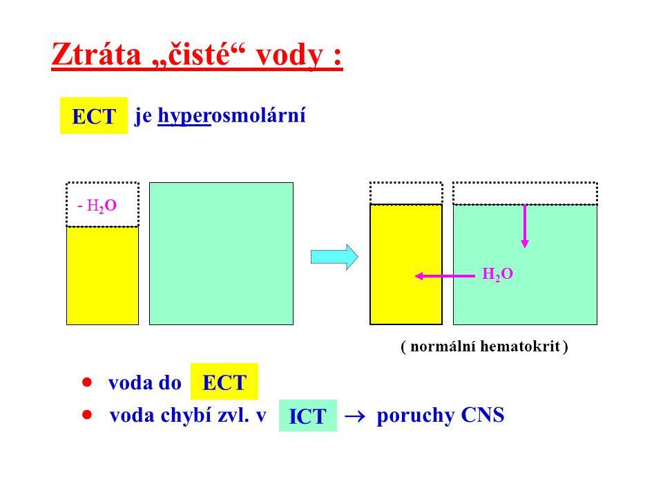 "Ztráta ""čisté vody :  voda do  voda chybí zvl. v  poruchy CNS ECT"