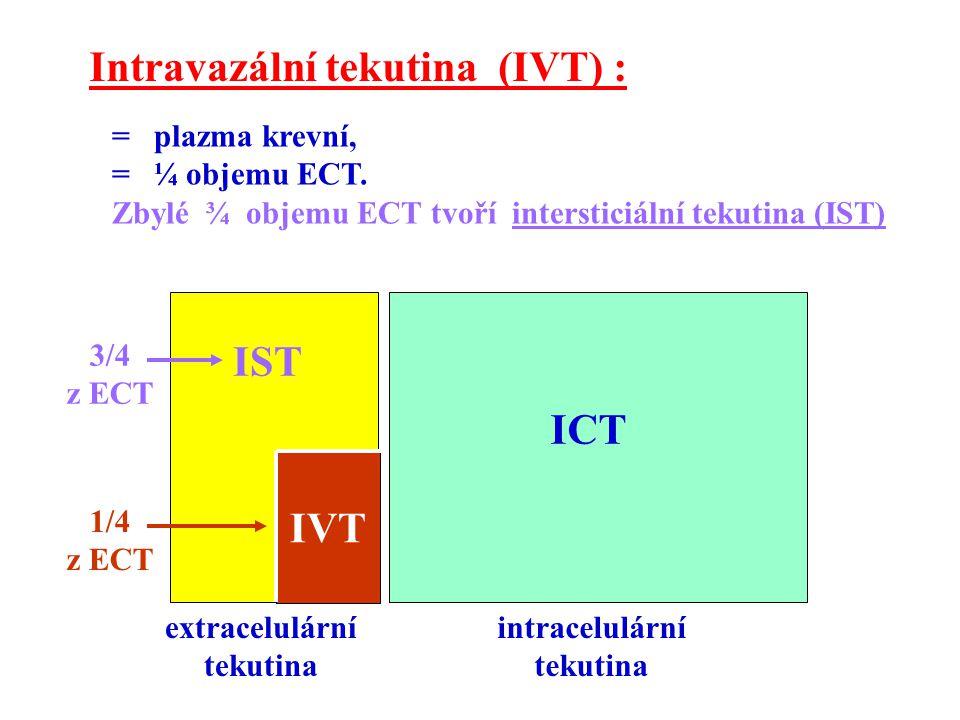 Intravazální tekutina (IVT) :