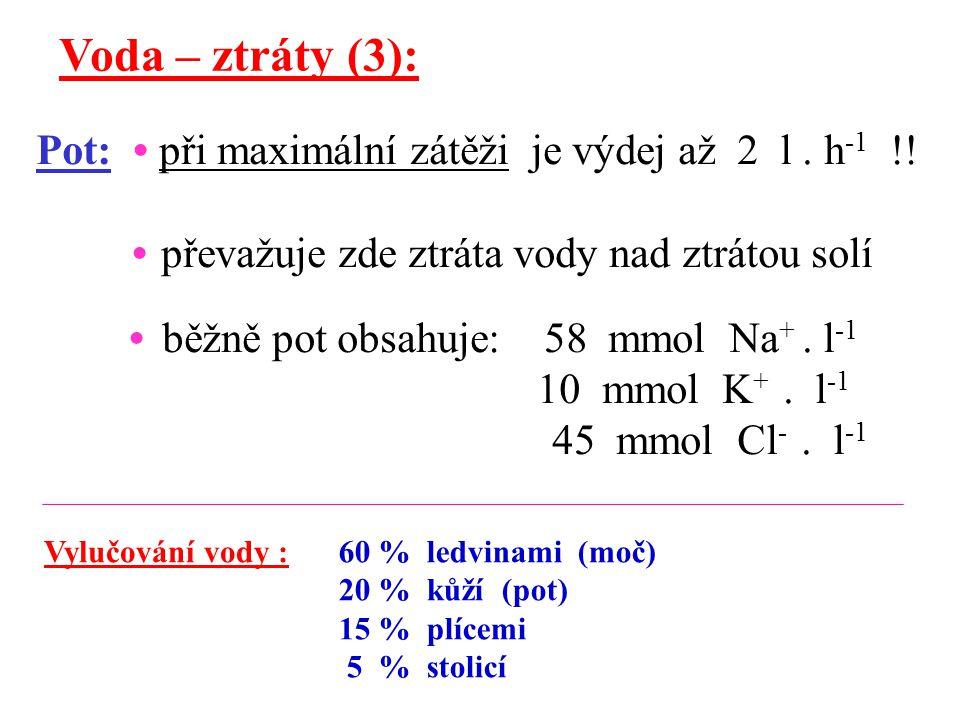 Voda – ztráty (3): Pot: • při maximální zátěži je výdej až 2 l . h-1 !! • převažuje zde ztráta vody nad ztrátou solí.