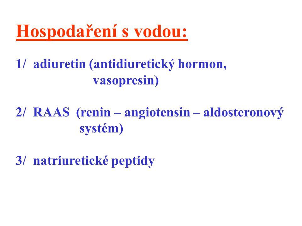 Hospodaření s vodou: 1/ adiuretin (antidiuretický hormon, vasopresin)
