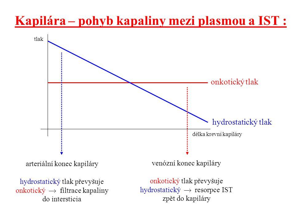 Kapilára – pohyb kapaliny mezi plasmou a IST :