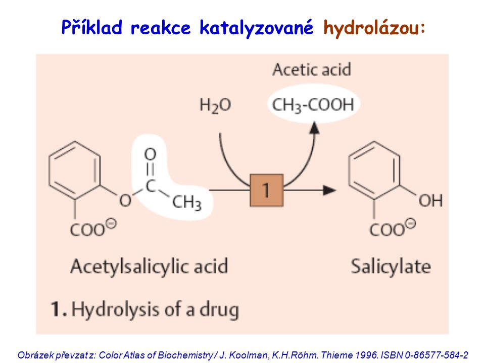 Příklad reakce katalyzované hydrolázou: