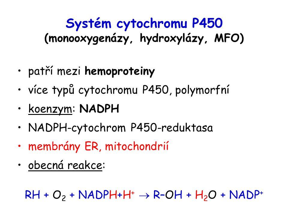 Systém cytochromu P450 (monooxygenázy, hydroxylázy, MFO)