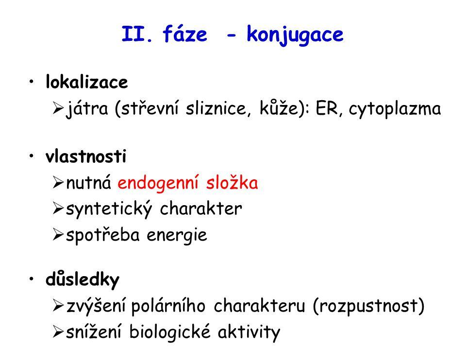 II. fáze - konjugace lokalizace