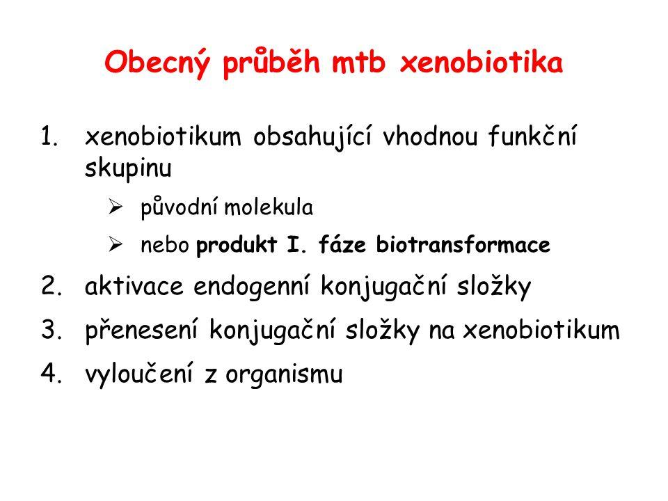 Obecný průběh mtb xenobiotika