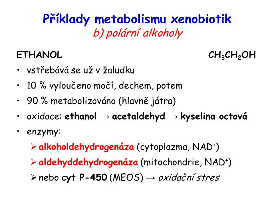 Příklady metabolismu xenobiotik b) polární alkoholy