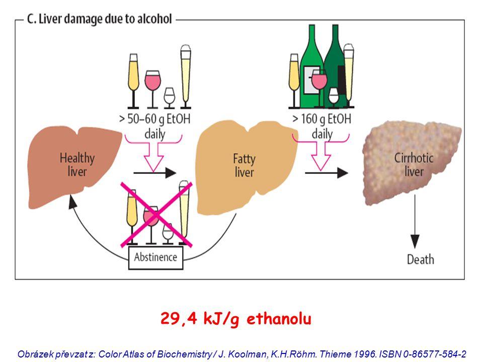 29,4 kJ/g ethanolu Obrázek převzat z: Color Atlas of Biochemistry / J.