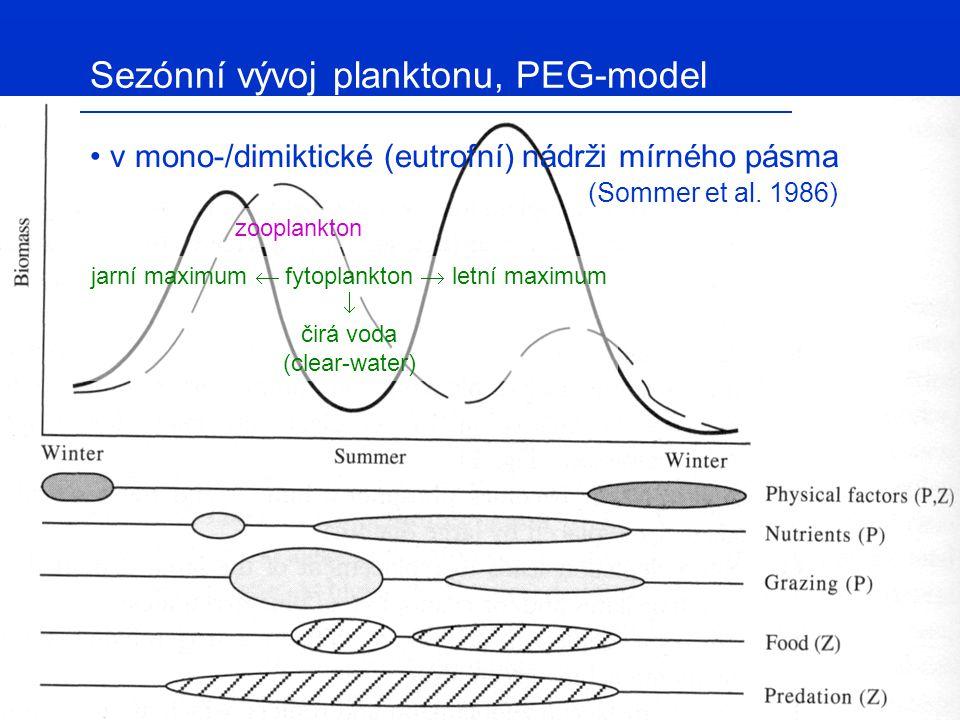 jarní maximum  fytoplankton  letní maximum