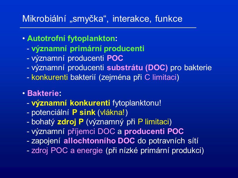 """Mikrobiální """"smyčka , interakce, funkce"""
