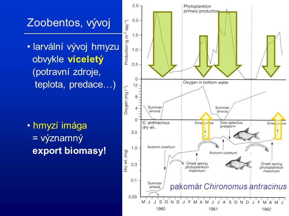 Zoobentos, vývoj larvální vývoj hmyzu obvykle víceletý