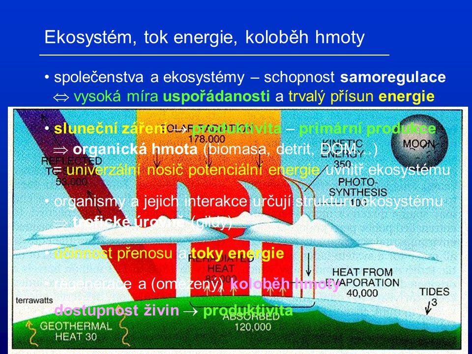 Ekosystém, tok energie, koloběh hmoty