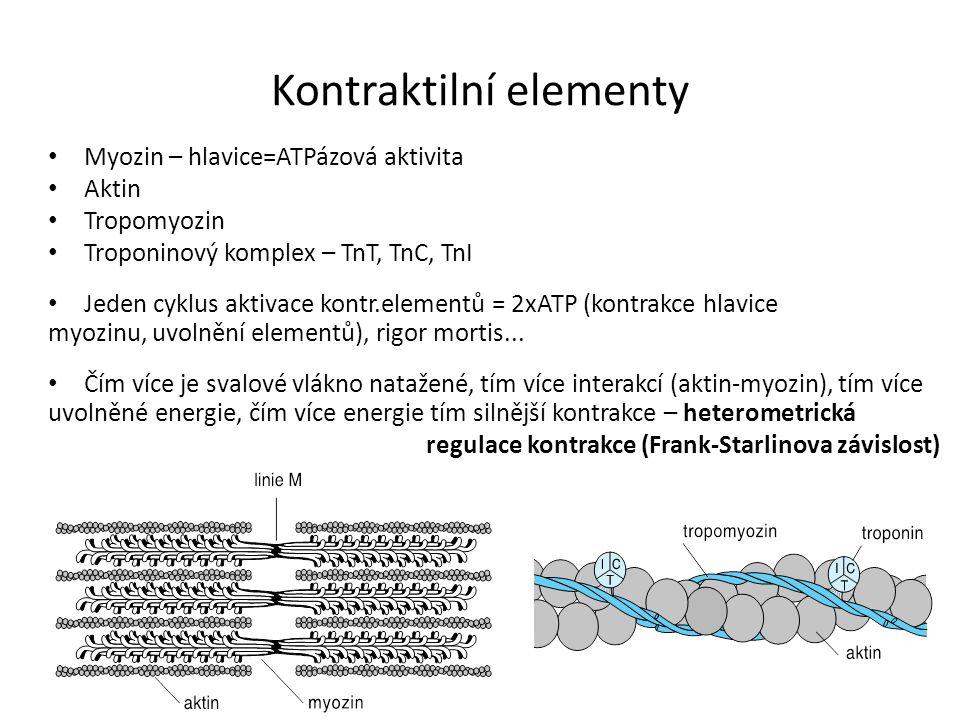 Kontraktilní elementy