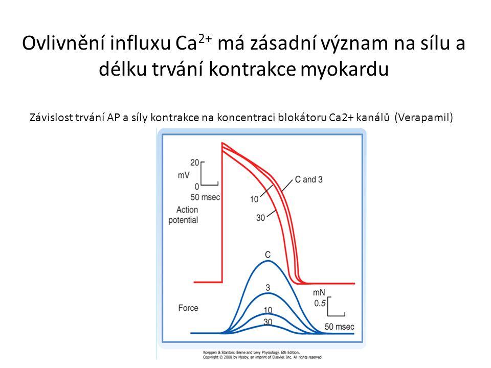 Ovlivnění influxu Ca2+ má zásadní význam na sílu a délku trvání kontrakce myokardu