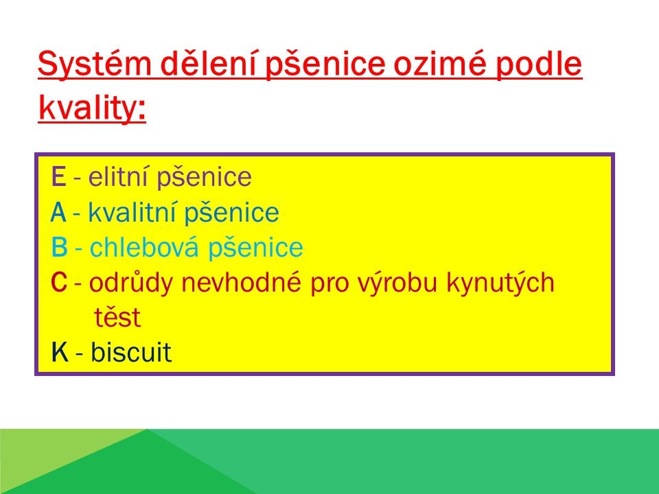 Systém dělení pšenice ozimé podle kvality: