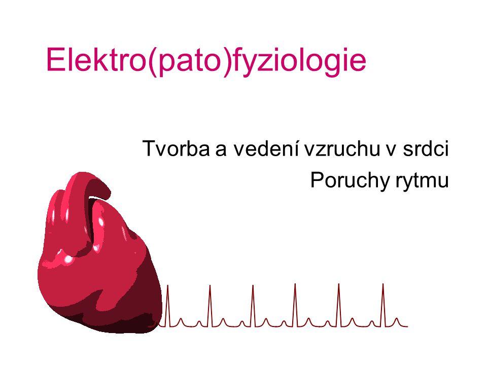 Elektro(pato)fyziologie