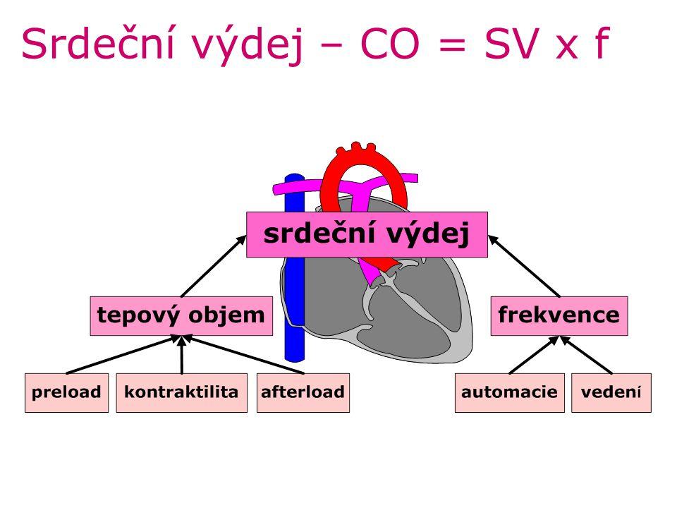 Srdeční výdej – CO = SV x f