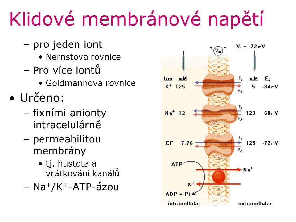 Klidové membránové napětí