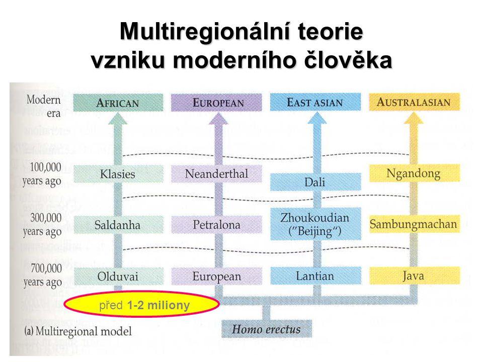 Multiregionální teorie vzniku moderního člověka