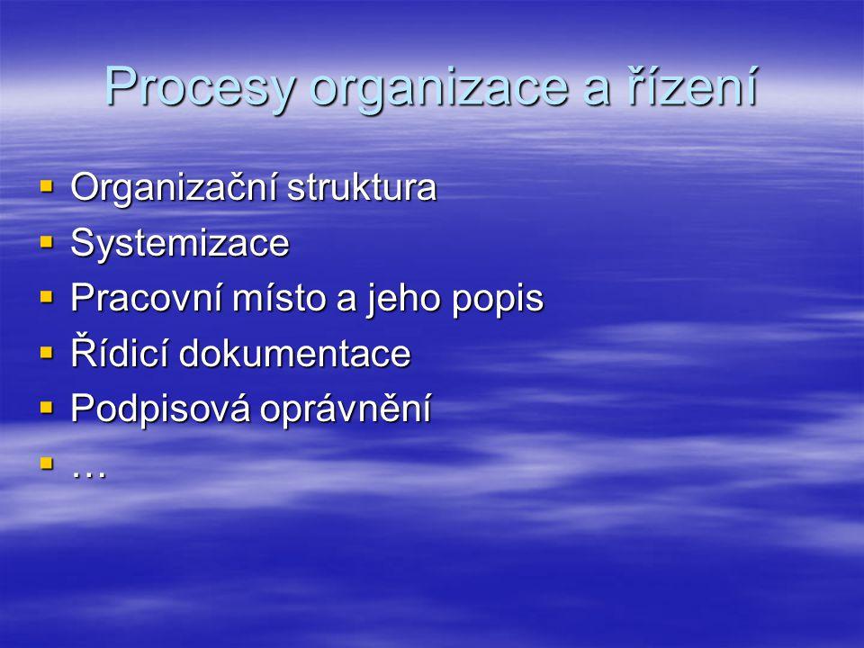 Procesy organizace a řízení