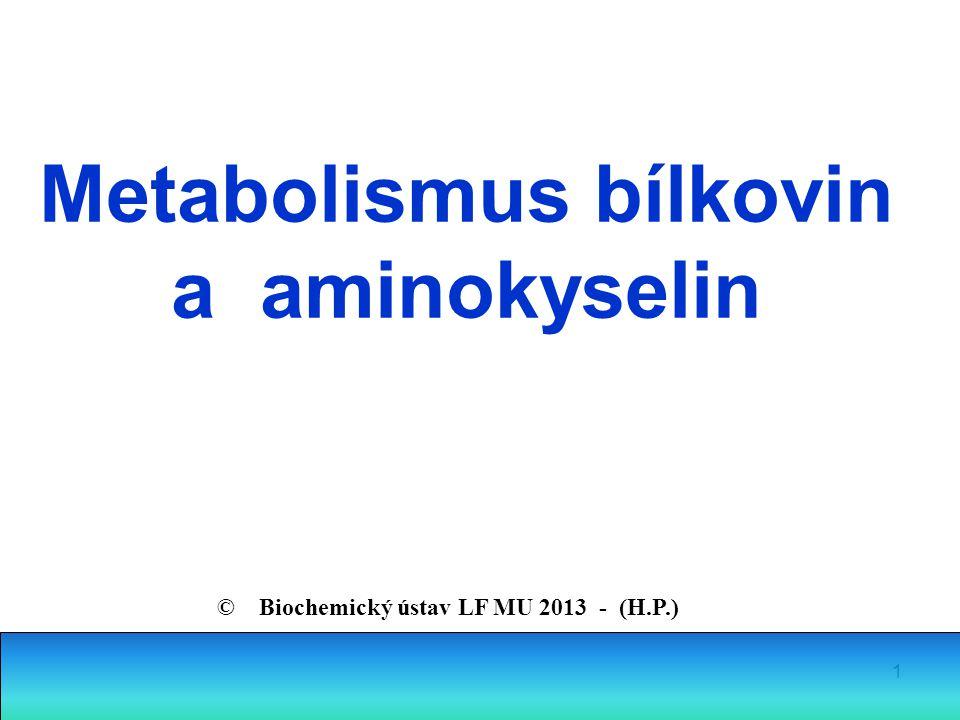 Metabolismus bílkovin a aminokyselin