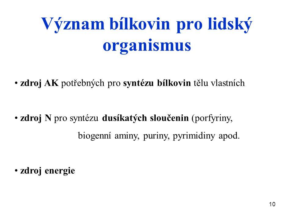 Význam bílkovin pro lidský organismus