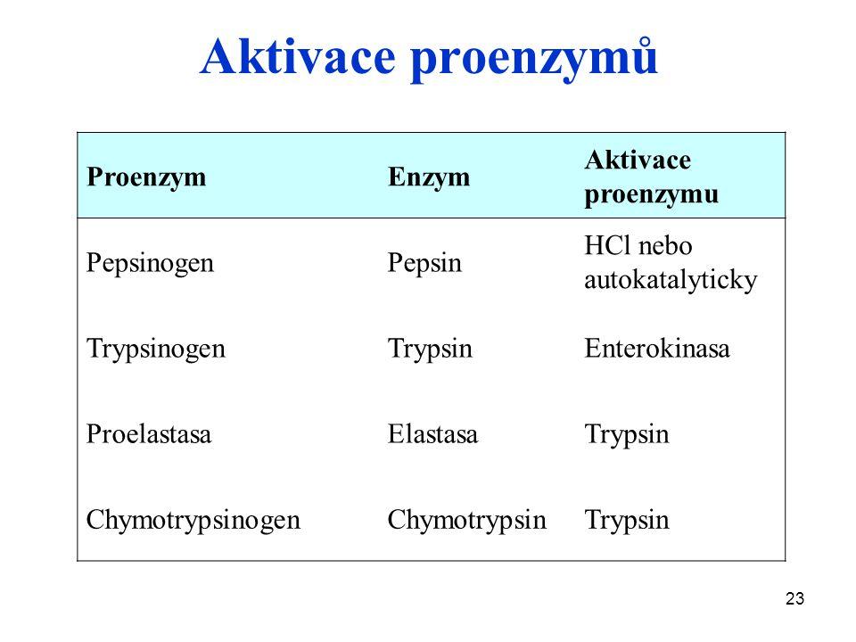 Aktivace proenzymů Proenzym Enzym Aktivace proenzymu Pepsinogen Pepsin