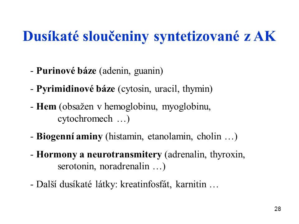 Dusíkaté sloučeniny syntetizované z AK