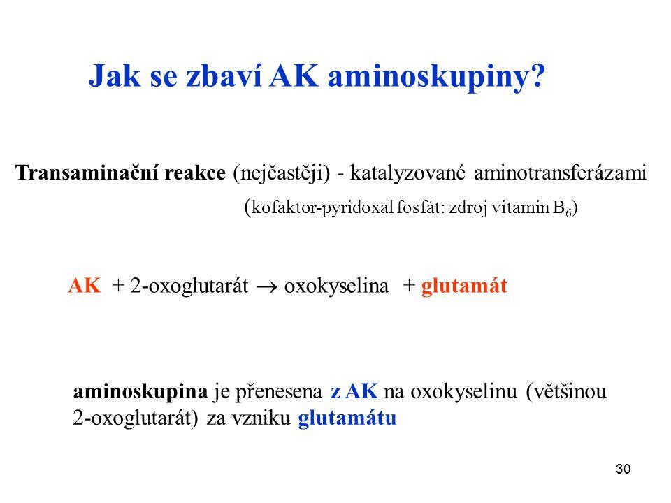 Jak se zbaví AK aminoskupiny