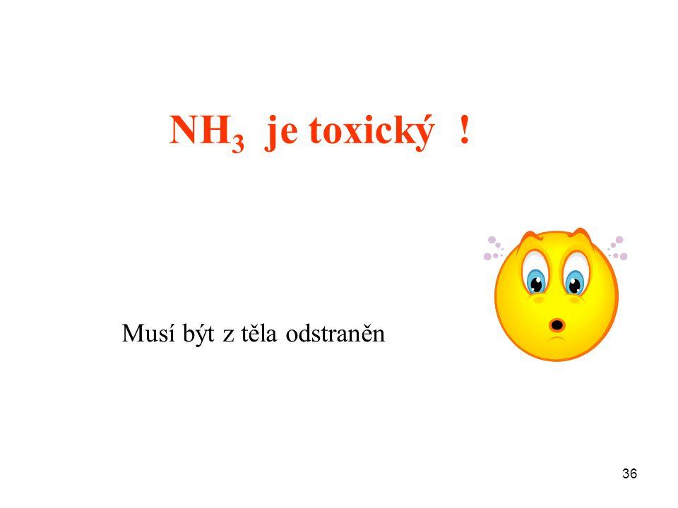 NH3 je toxický ! Musí být z těla odstraněn 36